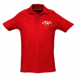 Wales polo