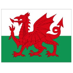 Wales flag 150 x 90 cm